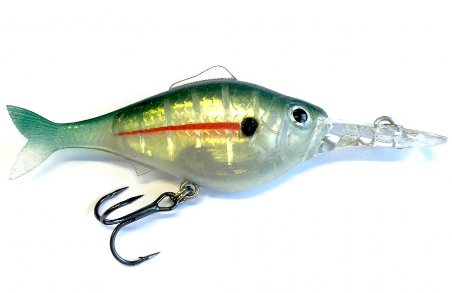 Ho sports katalog fishing soft lures storm wildeye for Fishing lure with camera